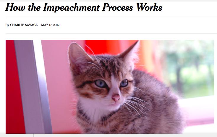 we shall overcome kitty
