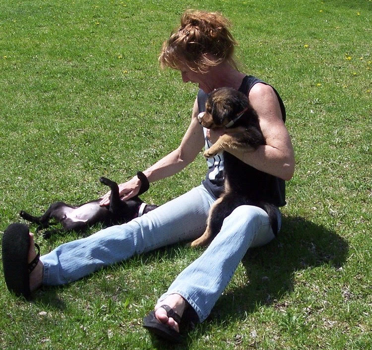 sherrie sitting in the grass playing with two small dogs